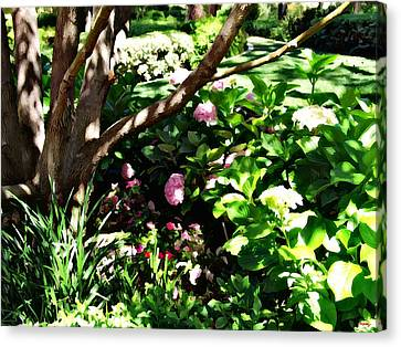 Canvas Print featuring the photograph Shadows Through The Garden by Glenn McCarthy Art and Photography
