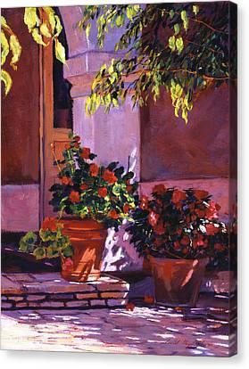 Shady Patio Canvas Print by David Lloyd Glover