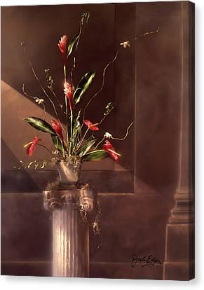 Shaft Of Light Canvas Print by Jack Eadon
