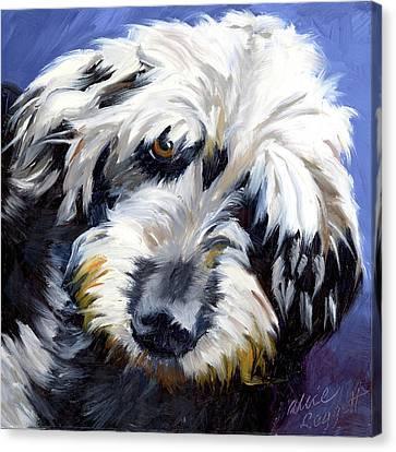 Shaggy Dog Portrait Canvas Print by Alice Leggett