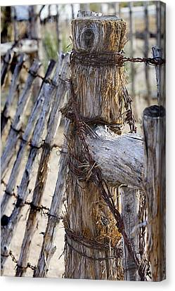 Canvas Print featuring the photograph Shaggy Fence Post by Phyllis Denton