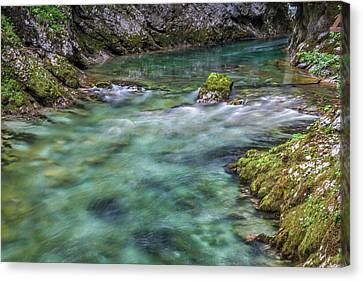 Canvas Print featuring the photograph Shallows In The Gorge - Slovenia by Stuart Litoff