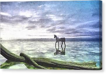 Shallows Painted Canvas Print by Cynthia Decker