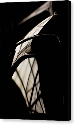 Shapes Canvas Print by Paul Job