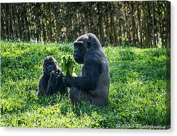 Pittsburgh Zoo Canvas Print - Sharing A Snack  by Megan Miller