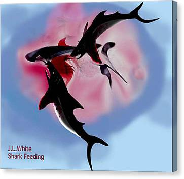 Shark Feeding Canvas Print by Jerry White