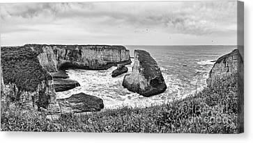 Shark Fin Cove Panorama Canvas Print