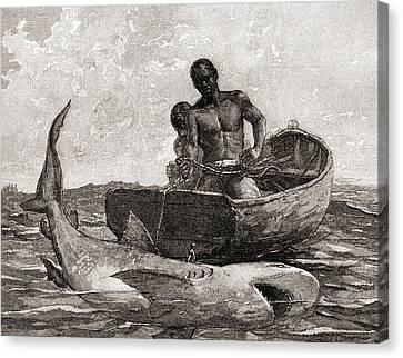 Shark Fishing, Nassau Bar Canvas Print by Winslow Homer