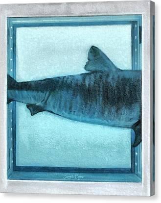 Shark In Magic Cubes - 2 Of 3 - Da Canvas Print by Leonardo Digenio
