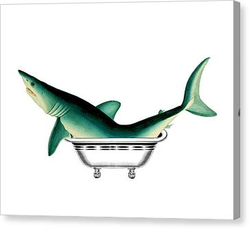Shark In The Bath Canvas Print by Madame Memento