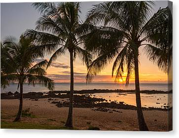 Sharks Cove Sunset 3 - Oahu Hawaii Canvas Print by Brian Harig