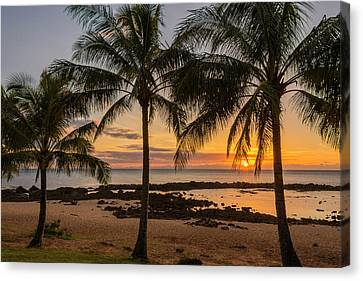 Tropical Sunset Canvas Print - Sharks Cove Sunset 4 - Oahu Hawaii by Brian Harig