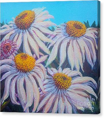 Shasta Daisy#1 Canvas Print by Gail Allen
