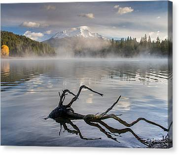 Shasta Mists And Morning 3 Canvas Print by Greg Nyquist