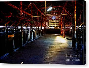 Shearing Shed From A Bygone Era Canvas Print by Blair Stuart
