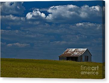 Shed In The Light Canvas Print by Susan Yates