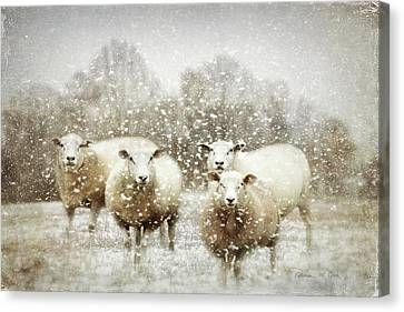Canvas Print featuring the photograph Sheep Gathering In Snow by Bellesouth Studio