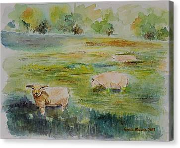 Sheep In Pasture Canvas Print by Geeta Biswas