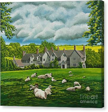 Sheep In Repose Canvas Print by Charlotte Blanchard