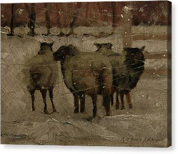 Sheep In The Snow Canvas Print by John Reynolds