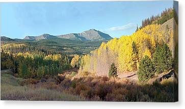 Canvas Print featuring the photograph Sheep Mtn In Flat Tops by Daniel Hebard
