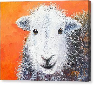 Sheep Painting On Orange Background Canvas Print