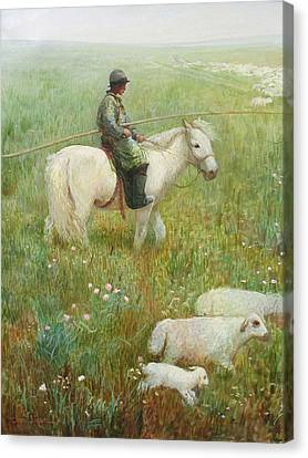 Sheepherder Canvas Print