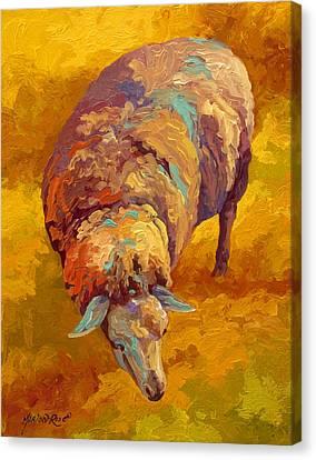 Llama Canvas Print - Sheepish by Marion Rose