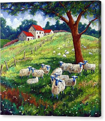 Sheeps In A Field Canvas Print