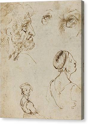 Sheet Of Studies  Canvas Print by Leonardo da Vinci