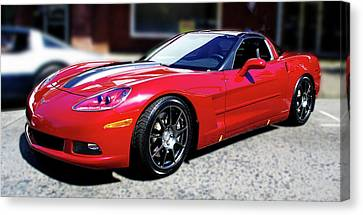 Shelby Corvette Canvas Print