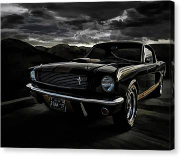 Pony Canvas Print - Shelby Gt350h Rent-a-racer by Douglas Pittman