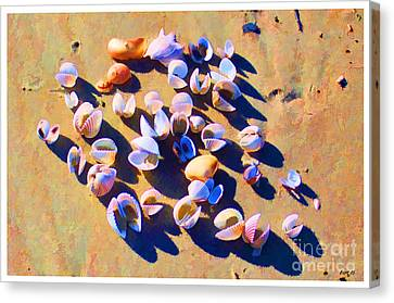 Canvas Print featuring the photograph Shell Collection by Roberta Byram