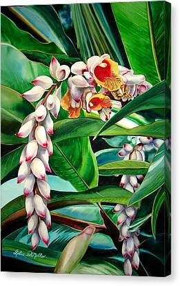 Shell Ginger Canvas Print