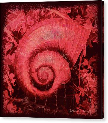Shell Series 1 Canvas Print by Marvin Spates
