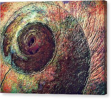 Canvas Print featuring the photograph Shelled by Lori Seaman