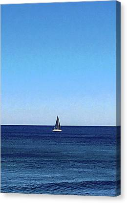 Sailboat Canvas Print - Shelley Park No. 61-1 by Sandy Taylor
