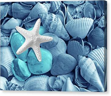 Shells And Pebbles In Shades Of Blue Canvas Print