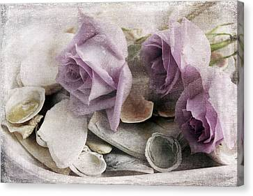 Shells And Roses Canvas Print by Janet Duffey