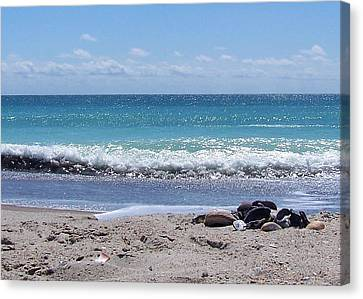 Canvas Print featuring the photograph Shells On The Beach by Sandi OReilly