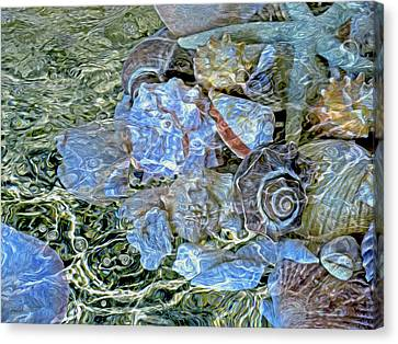 Shells Underwater 20 Canvas Print by Lynda Lehmann
