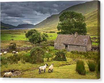 Shelter For Centuries Canvas Print by Tim Bryan