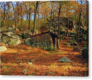 Canvas Print - Shelter In Harriman For At Hikers by Raymond Salani III