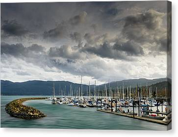 Canvas Print featuring the photograph Sheltered by Dan Mihai