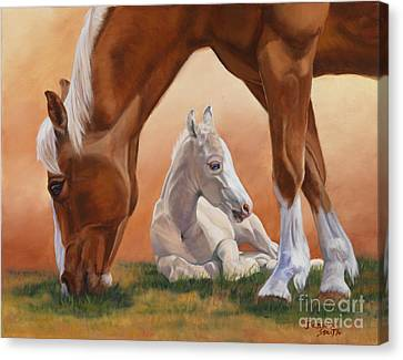 Sheltered Canvas Print by Danielle Smith