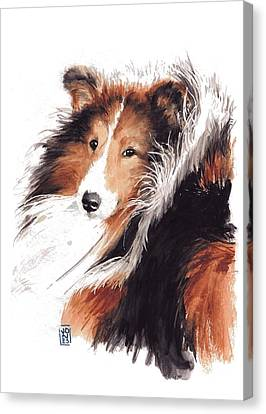 Watercolor Pet Portraits Canvas Print - Sheltie by Debra Jones