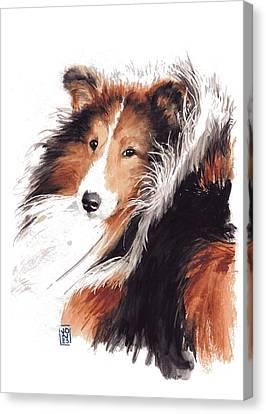 Sheltie Canvas Print by Debra Jones