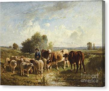 Shepherd With His Sheep Canvas Print by Celestial Images