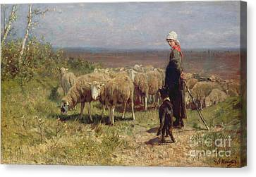 Shepherdess Canvas Print