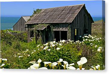 Shephers's Shack Canvas Print by Garry Gay
